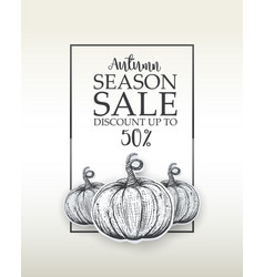 design banner big autumn sale vector image