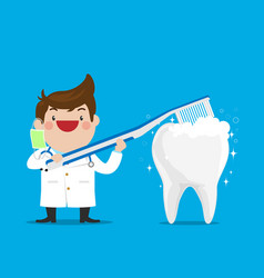 dentist showing how to brush the teeth vector image