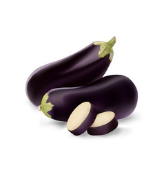 eggplant and slice isolated on white photo vector image
