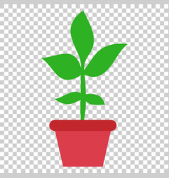 flower pot icon in flat style seedling flower on vector image