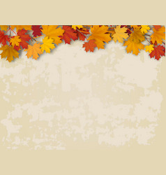 maple tree branch on old wall background vector image