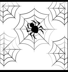 Monochrome background halloween with spider vector