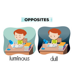 Opposites luminous and dull vector