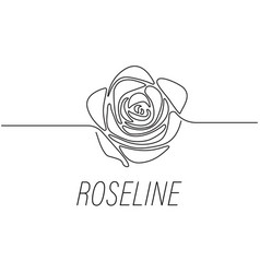 Rose line graphic design template isolated vector