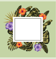 square frame with flowers plants decoration vector image