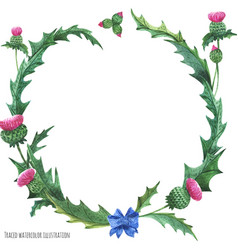 Wreaths from thistle with blue bow-knot vector