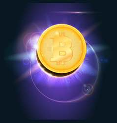 Bitcoin gold coin the symbol of the digital vector