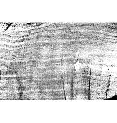 DSC 01621235 vector