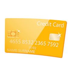 golden credit card vip client member service vector image