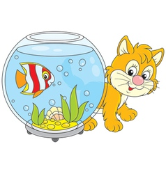 Kitten and fish vector image