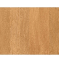 Natural wood texture vector