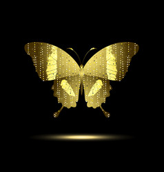 stylized golden butterfly vector image