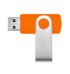 usb flash drive in usb drive in vector image
