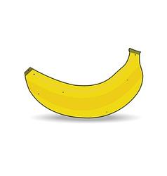 Ripe banana isolated vector image