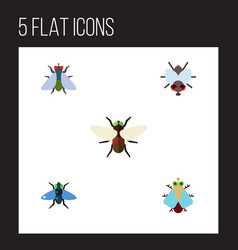 Flat icon fly set of dung buzz bluebottle and vector