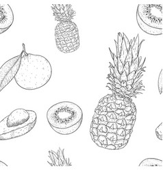 fruits seamless pattern outline hand drawn sketch vector image