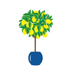 Lemon tree in a pot vector