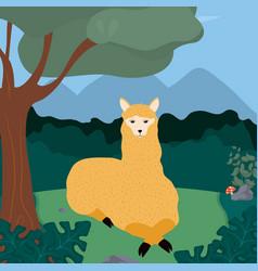 Llama cute animals cartoons vector