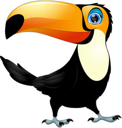 merry toucan bird vector image