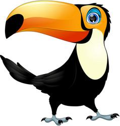 Merry toucan bird vector