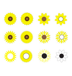 sunflowers icon on white background flat style vector image