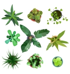 Top view plants Easy copy paste in your landscape vector