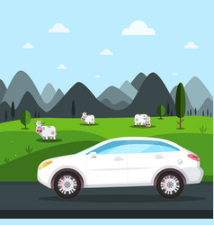 white car trip design cows on field and mountains vector image