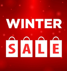 Winter sale four package labeled vector
