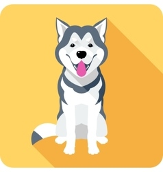 Alaskan Malamute dog icon flat design vector image vector image