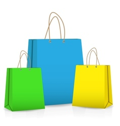 Empty Shopping Bag for advertising and branding vector image
