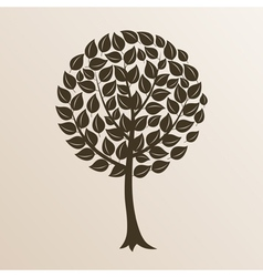 tree with a roundish crone a vector image vector image