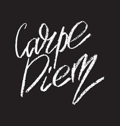 carpe diem inspirational quote typographical vector image