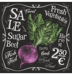 Fresh beet logo design template vegetables vector