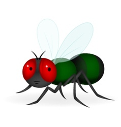 Green fly cartoon vector
