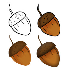 Hand drawn acorn isolated in a white vector