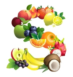 Letter S composed of different fruits with leaves vector image