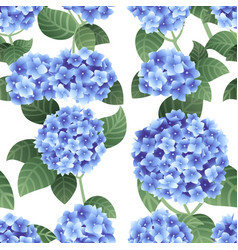 Seamless pattern blue hydrangea flowers with vector