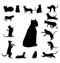 Set of cats silhouette vector