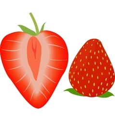 Strawberry whole and half vector image
