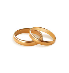 two golden wedding rings on white background vector image