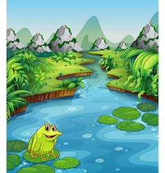 River scene with frog on leaf vector image vector image