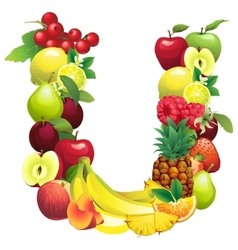 Letter U composed of different fruits with leaves vector image