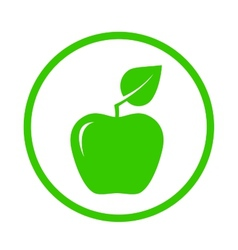 apple with green leaf vector image vector image