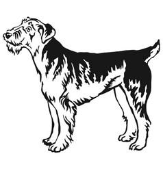 Decorative standing portrait airedale terrier vector