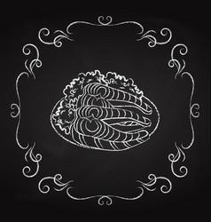 dish with fish icon drawn chalk vector image