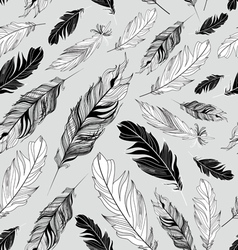 Pattern feathers vector