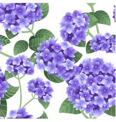 Seamless pattern purple hydrangea flowers with vector