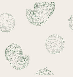 Set of cabbage hand drawn sketch line art vector