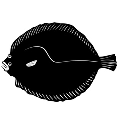 Silhouette of brill vector