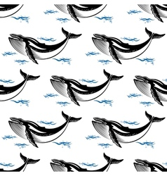 Swimming whale seamless pattern vector image